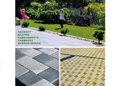 江苏荷兰砖